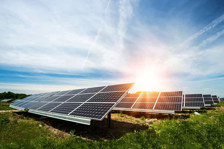 Commercial and Utility-Scale Solar